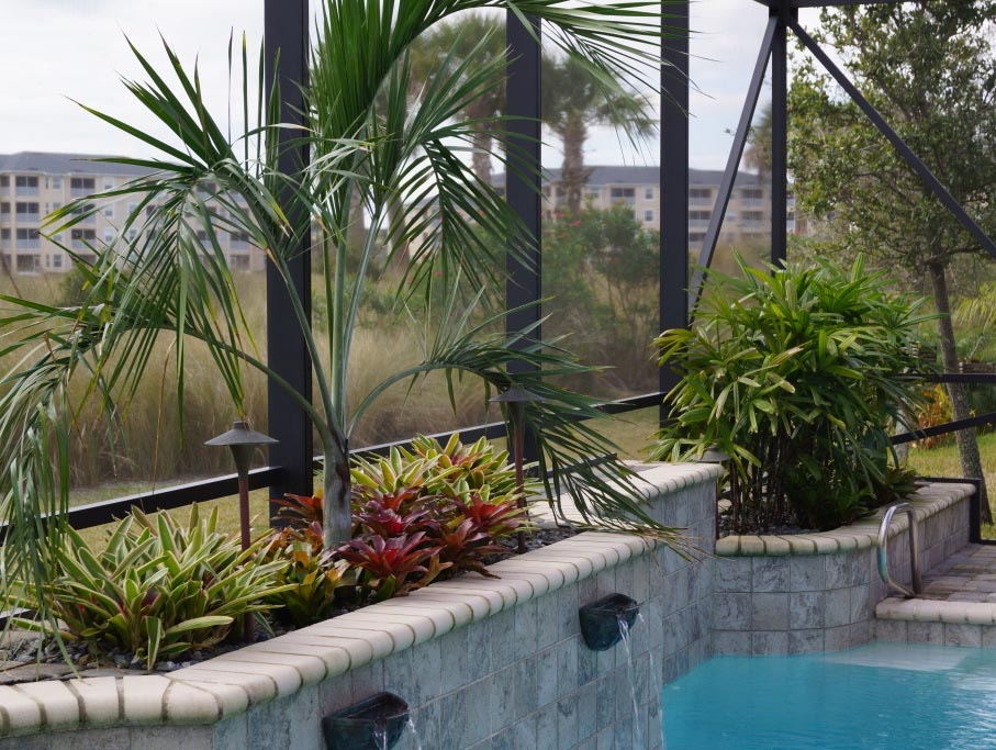 Pool Gardens: Tropic Greenery Photo Gallery Melbourne Florida